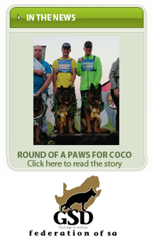Round of a paws for coco